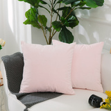 HOME BRILLIANT 2 Pack Velvet Decorative Square Throw Pillow Cases Cover Cushion Covers for Sofa/Couc