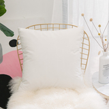 HOME BRILLIANT Ultra Soft Velvet Solid Decorative Throw Pillowcase Cover Euro Sham for Baby Sofa Liv