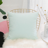 HOME BRILLIANT Solid Decorative Soft Velvet Throw Pillowcase Cover Accent Cushion Cover Living Room,